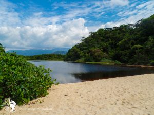 Discovering FREE beaches - Jureia