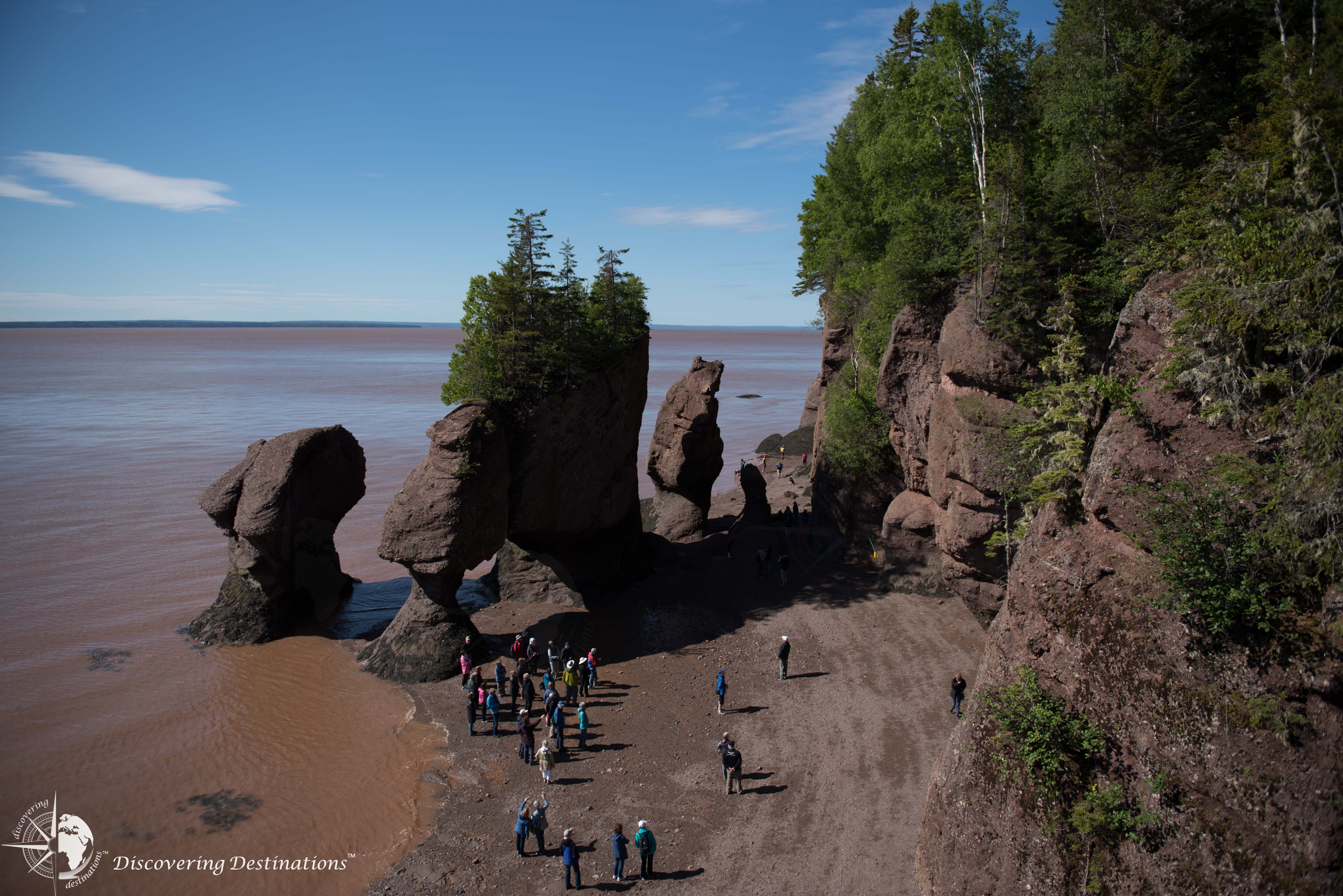 Hopewell Rocks overview