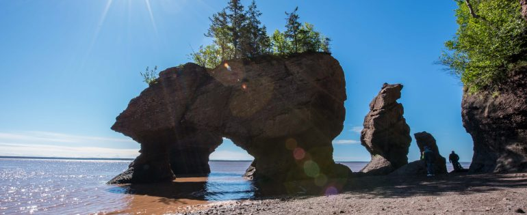 Discovering the Hopewell Rocks
