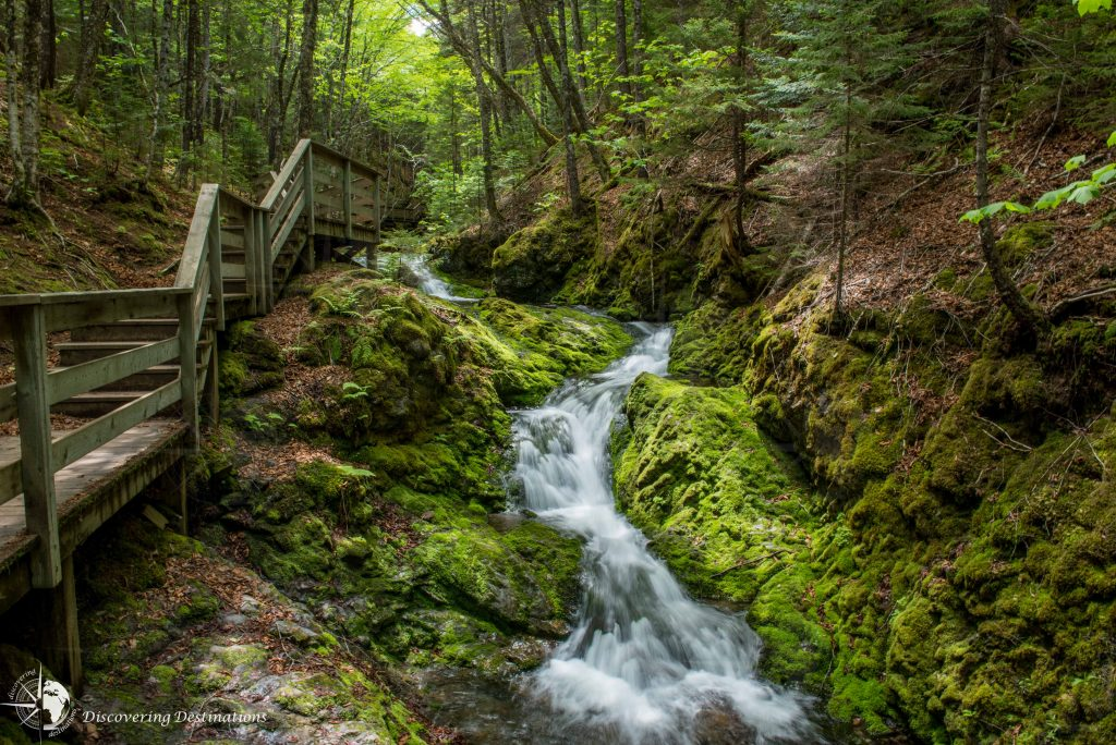 Discovering Fundy Park