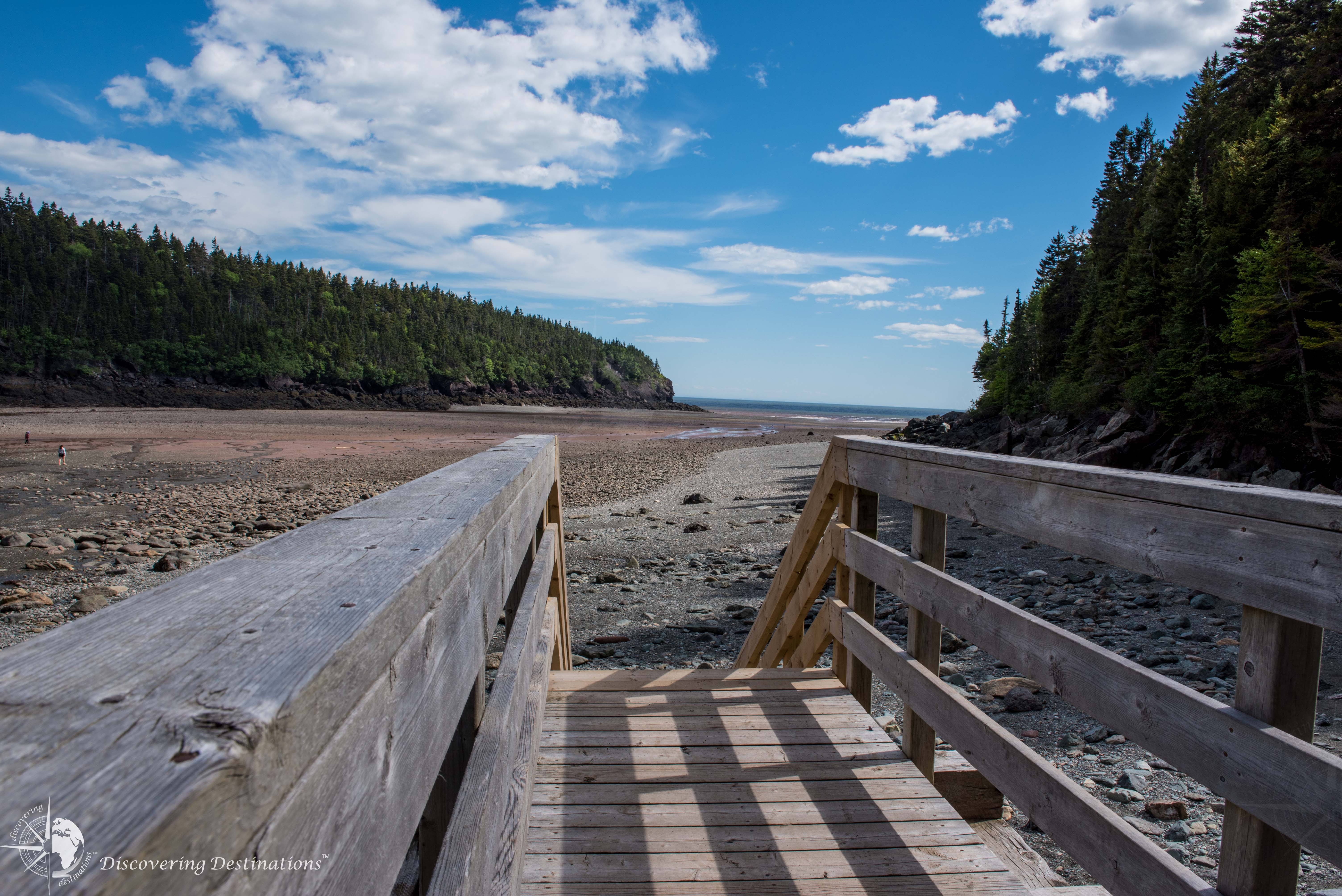 Fundy National Park Woody Point