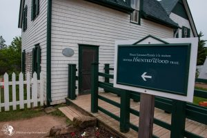Discovering Anne of Green Gables