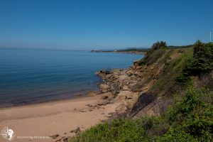 Northern beach and shoreline