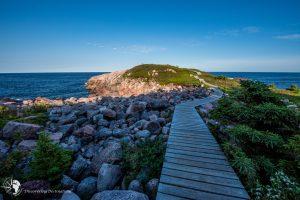 Green Cove