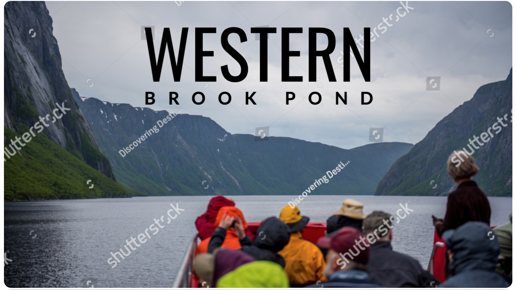 Shutterstock for project
