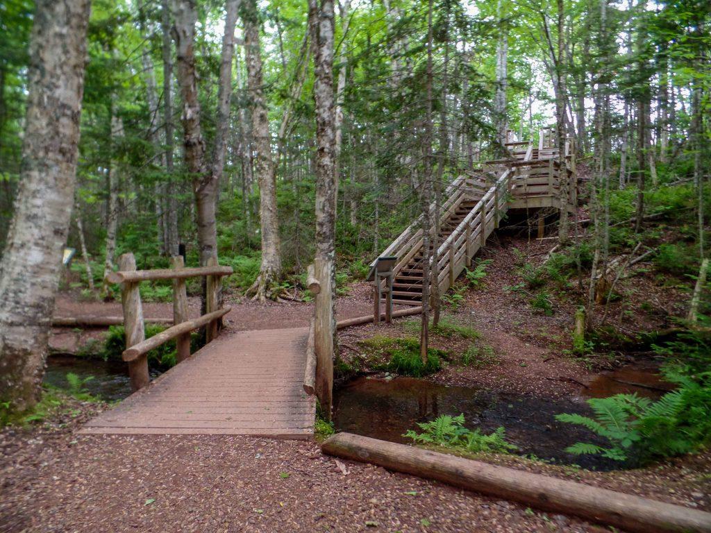 Balsam Hallow Trail